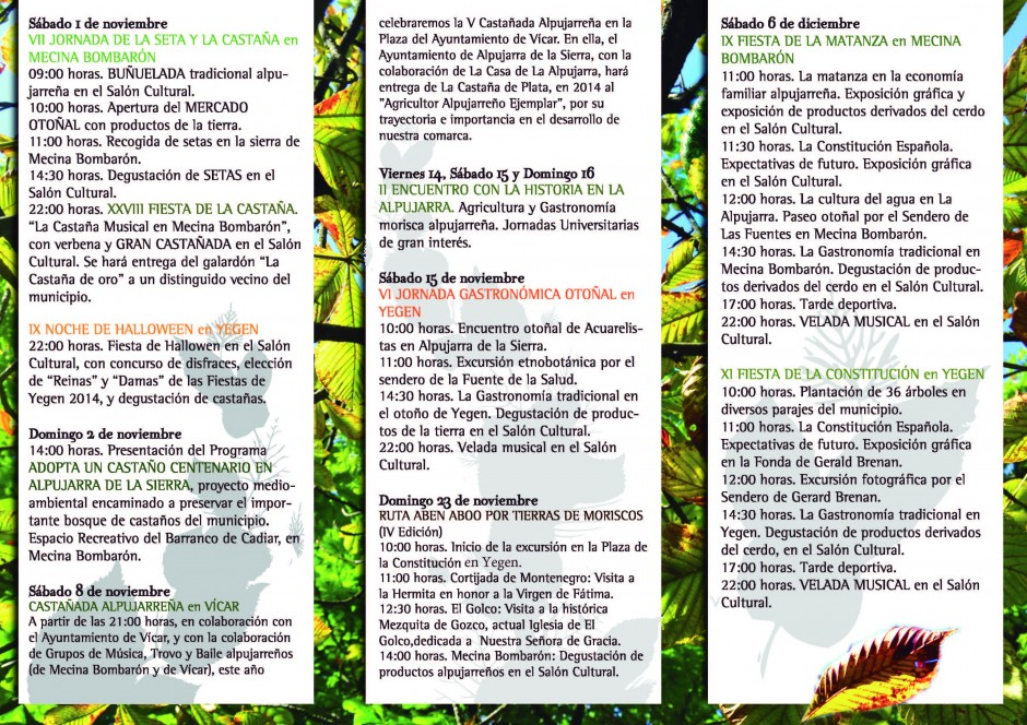 otoño-cultural-2014_Página_2